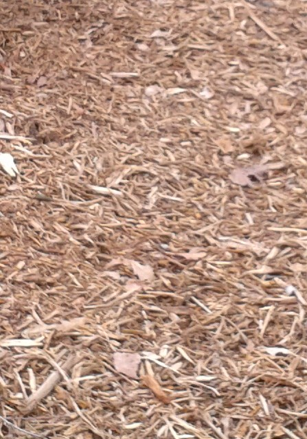 Mulch Charlotte Fort Mill Indian Land